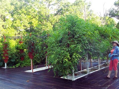 ezgro garden hydroponic vertical container garden kits