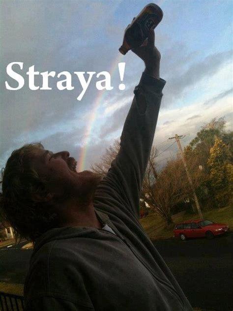 Straya Memes - straya aussie memes pinterest
