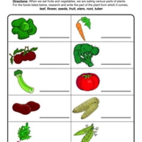 plant parts we eat worksheet science
