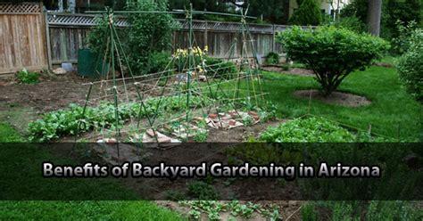 vegetable gardening in arizona benefits of backyard gardening in arizona apnursery