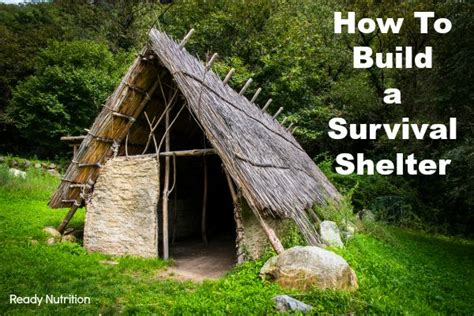 how to a shelter how to build a survival shelter your may depend on it ready nutrition