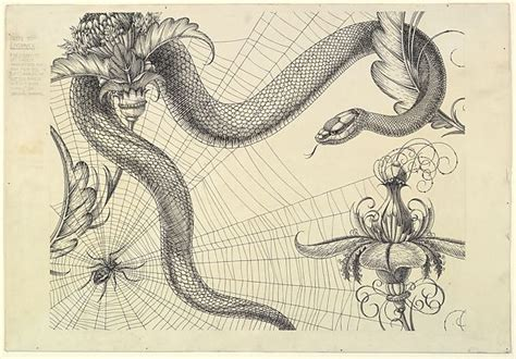 henry weston keen spider web snake  flowers