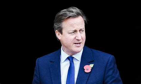 biography david cameron david cameron defended on twitter after lord ashcroft s