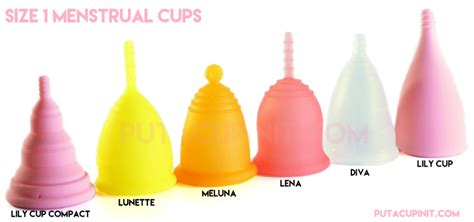 cup period introducing lena cup a new menstrual cup