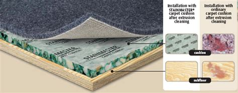 How Big Should A Rug Pad Be by Your Padding Discount Flooring Supermart