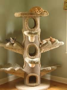 Window Boxes Australia - cat furniture cat trees for pampered cats cat pause