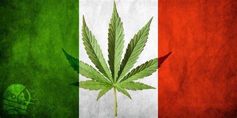 canapé bouche dali legalizzazione cannabis italia ecco la legge che non la