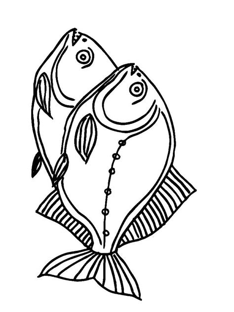 piranha coloring page coloring home