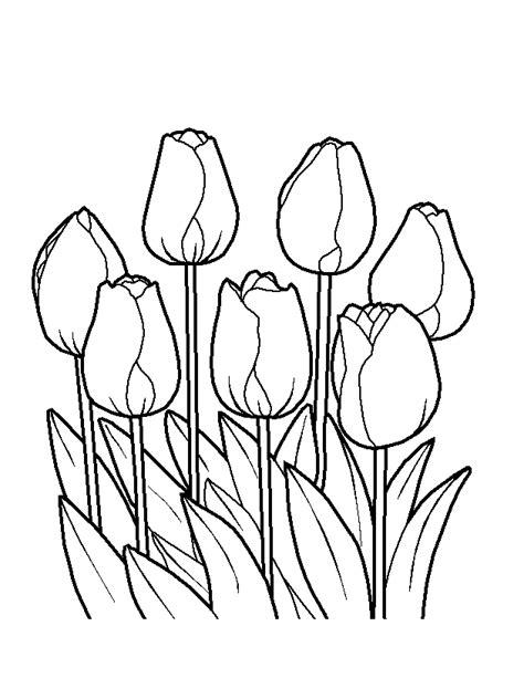 disegnare i fiori fiori disegni da colorare bambini disegni