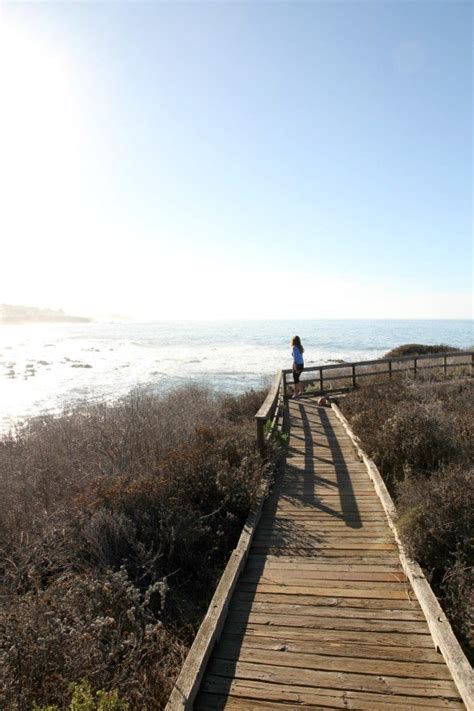 After Mba In California by Blue Dolphin Inn In Cambria On California S Central Coast
