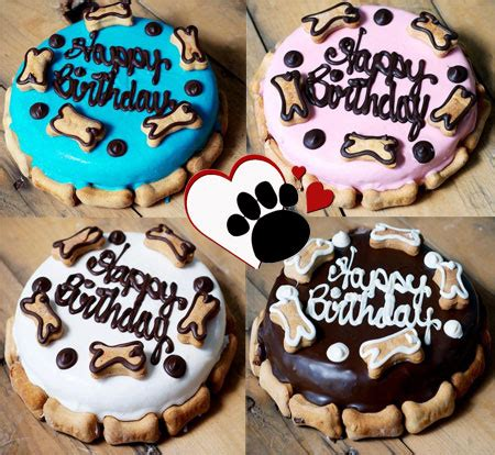 cakes for dogs birthday cakes for dogs