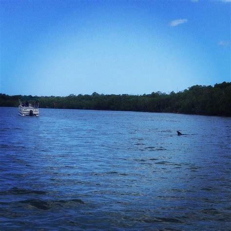 triggs bay resort boat rentals naples bay resort boat rentals 23 photos 13 reviews
