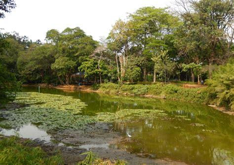 jardin medellin jard 237 n bot 225 nico naturaleza en medell 237 n juanuribeviajes
