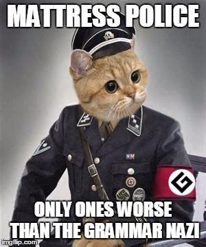 Grammar Police Meme - grammar nazi cat imgflip
