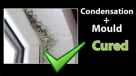 How To Stop Mold In Bedroom by How To Get Rid Of Mold In Bedroom Psoriasisguru