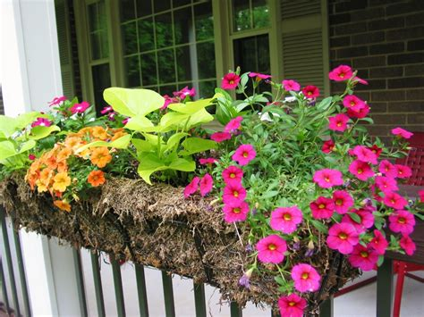 outdoor beautiful railing planters   fence  deck