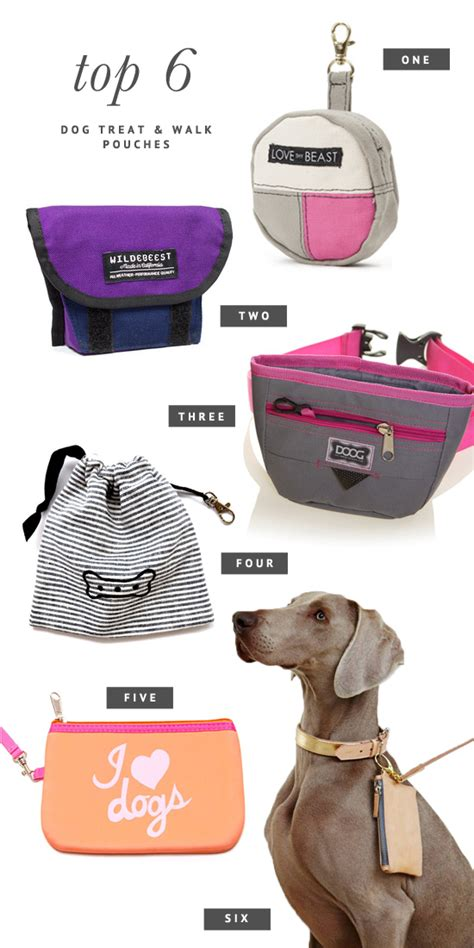 7 Dogs That Make The Best Accessories by Pretty Fluffy