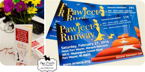 fort wayne spca dogs spca pawject runway 2016 187 paw prints pet photography