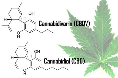 Does Cbd Help Detox Your by Cbd For Endometriosis Reduce Your Inflammation Naturally