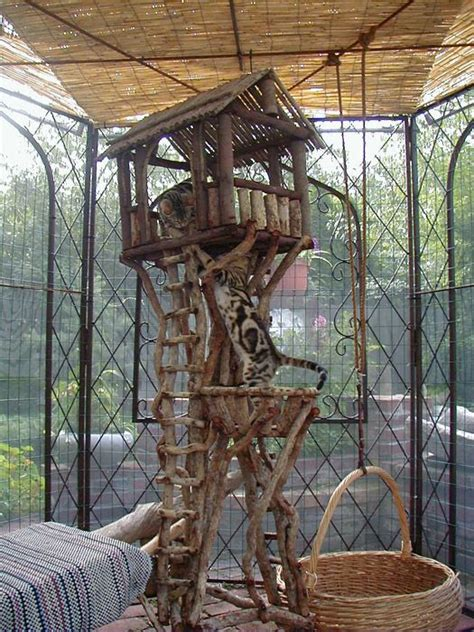 cat tree house 25 best ideas about cat playhouse on pinterest house of cat cardboard cat house