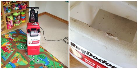 rug doctor contact number rug doctor carpet cleaner rental rug doctor products where to rent a steam cleaner modern home