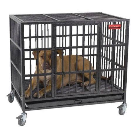 proselect empire crate your can t these heavy duty escape proof crates