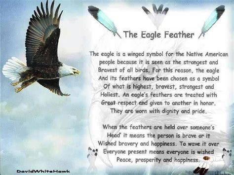 eagle biography in hindi the eagle feather native quotes pinterest feathers