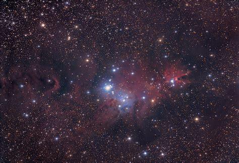 christmas tree nebula tree nebula ng2264 deography by o donnell