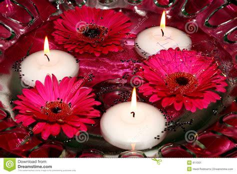 immagini candele e fiori candele e fiori in acqua immagine stock immagine 611051