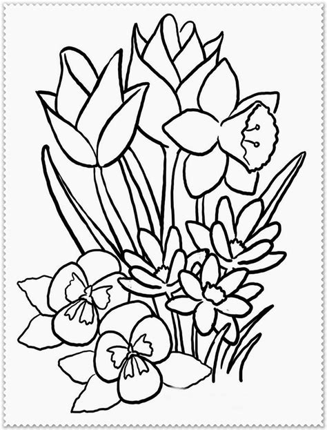 printable spring flowers coloring sheets spring flower coloring page realistic coloring pages