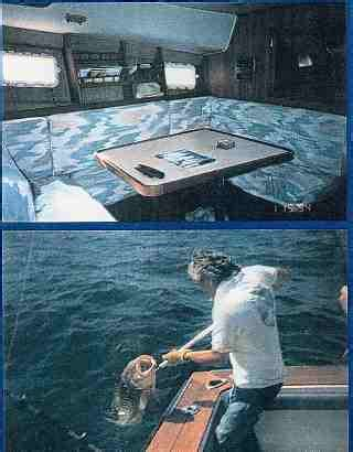 charter boat license florida welcome to john s pass bait and charter fishing