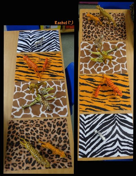 pattern matching go 17 best images about tropical wild animal crafts on