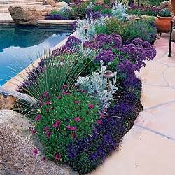 flowers around a patio border potted plants pinterest gardens beautiful and garden borders