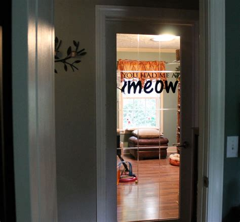 cat room cat room cattery hissy fit coons