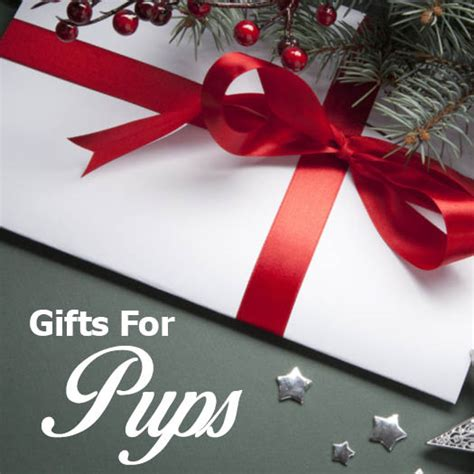 pet christmas gifts ark country store