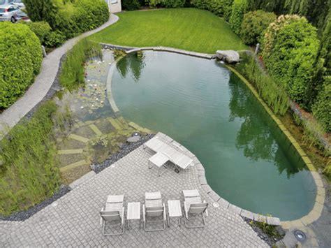 pool oder schwimmteich schwimmteich und naturpool darauf kommt es an