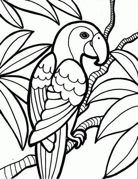 birds to color desenhos de araras para imprimir e colorir animais para