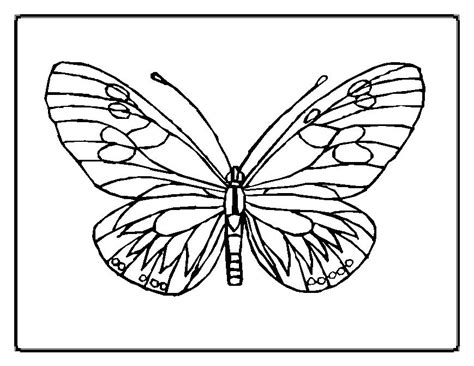 Coloring Pages Of Butterflies by Who Think Butterfly Coloring Pages