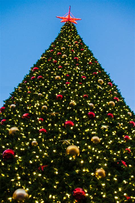 when is the christmas tree lighting in san francisco 2016 christmas tree lighting ceremonies at union square