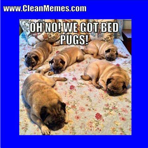 clean memes    clean memes