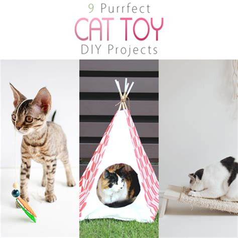 Diy Cat Toys From Marmalade by 9 Purrfect Cat Diy Projects The Cottage Market