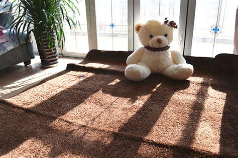 Karpet Permadani Lazada berbulu anti selip tikar karpet permadani yang menutupi lantai 80 cm x 120 cm coklat lazada