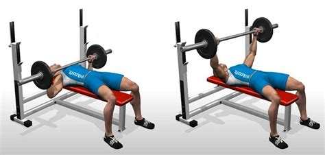 Barbell Bench Press Flat Barbell Bench Press Bodybuilding Wizard
