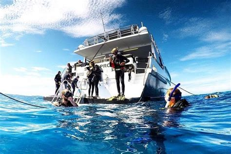 pro dive cairns get your padi diving certification on the great barrier reef
