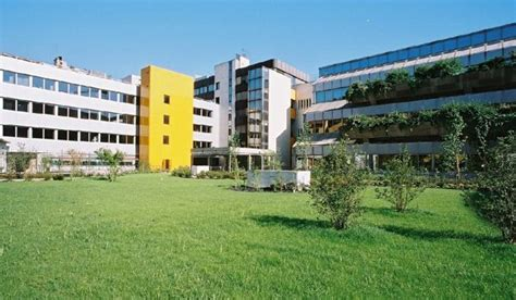 Mba Luxury Management Ranking by Mba Exchange Business Schools Directory