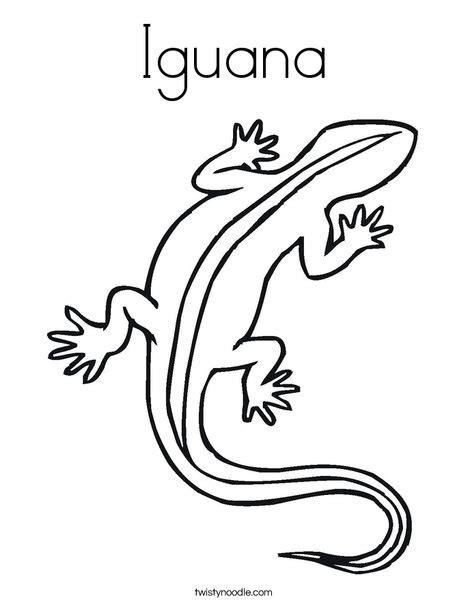 baby iguana coloring page iguana coloring page twisty noodle