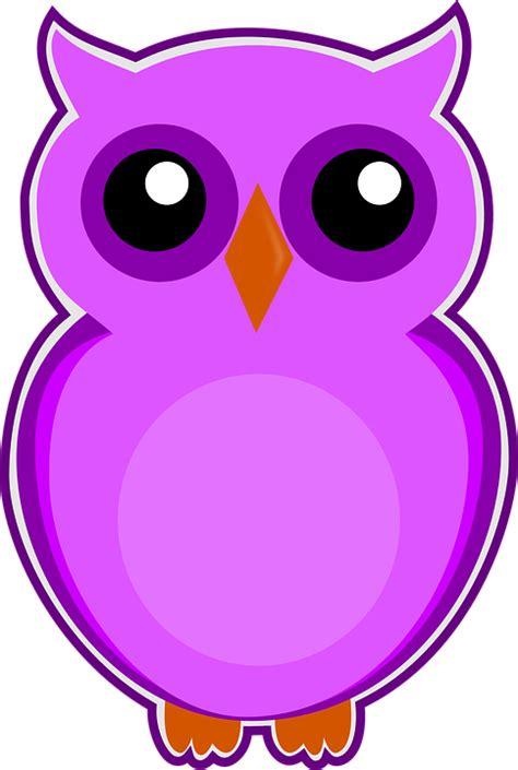 Dompet Burung Hantu Dna Lucu Murah gambar 10 gambar bunga anggrek ungu top lucu warna di