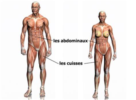 Les Bienfaits De La Marche Rapide Sur Tapis by Guide Fitness Guide D Entra 238 Nement V 233 Lo D Appartement