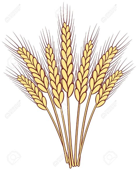 wheat clip the gallery for gt wheat wreath vector