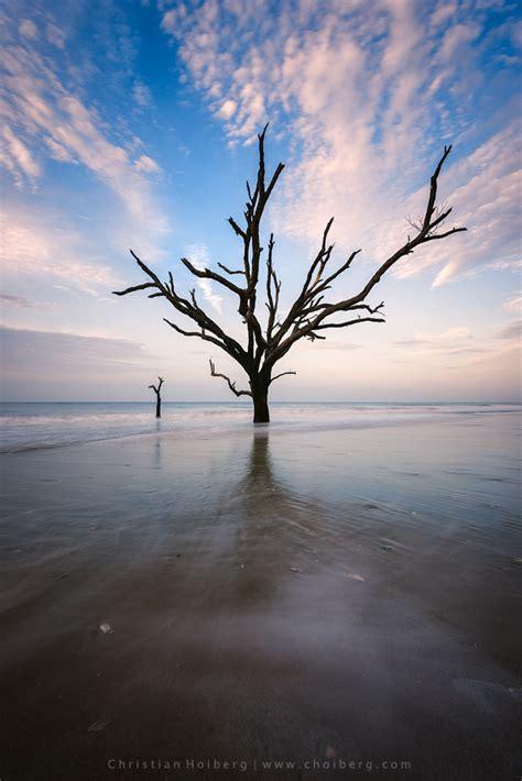 Botany Hours Landscape Photography In Botany Bay Sc Capturelandscapes